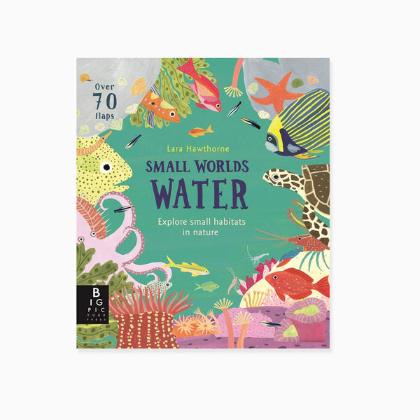 Small Worlds: Water Book