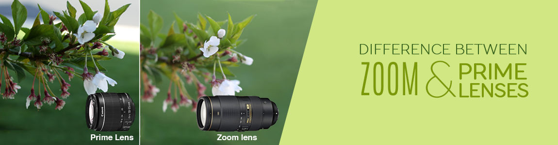 Zoom Lens VS Prime Lens – which one is the best? Cover