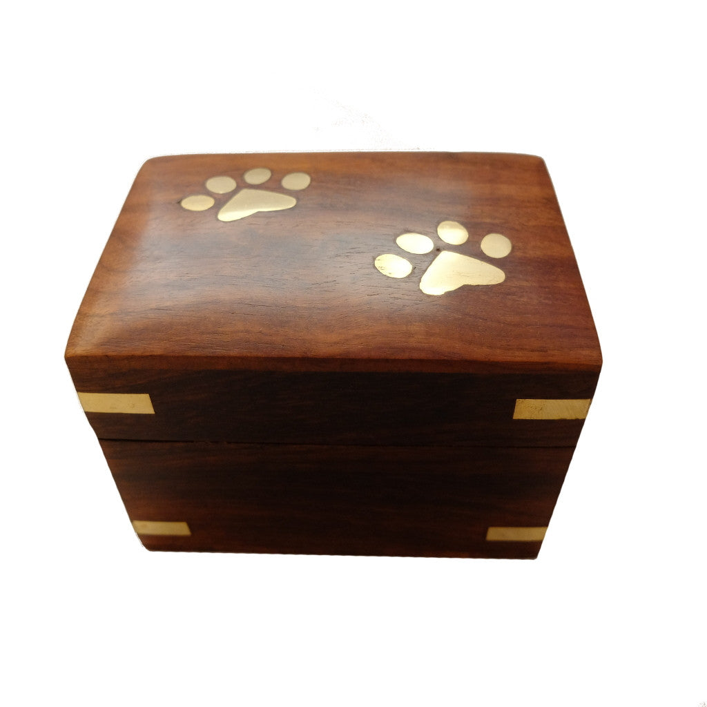 Large Paw Box