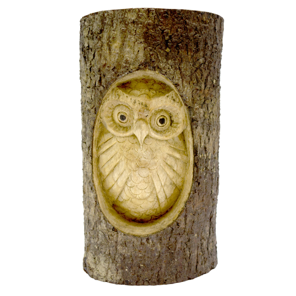 Timber-Treasure Owl in Log Carving