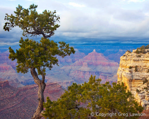 Arizona - Greg Lawson Photography Art Galleries in Sedona