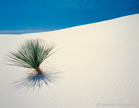 White Sands - Greg Lawson Photography Art Galleries in Sedona