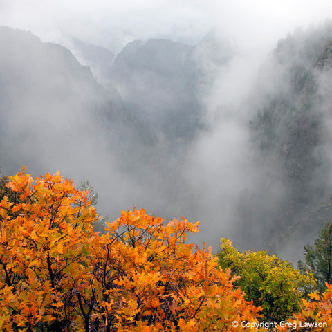 Black Canyon Of The Gunnison - Greg Lawson Photography Art Galleries in Sedona