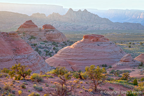 Sandstone Symmetry - Greg Lawson Photography Art Galleries in Sedona