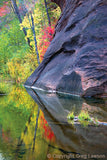 Oak Creek Canyon autumn, Sedona Book, Sedona Heaven Sent, Greg Lawson Photography Art Galleries in Sedona, Arizona
