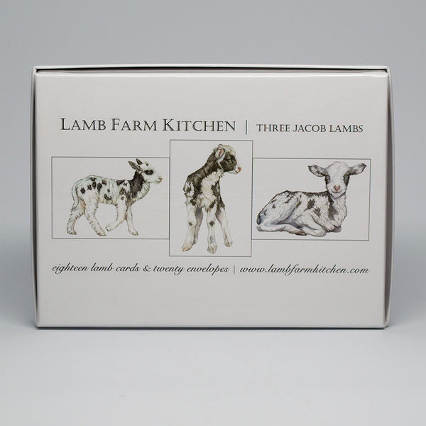 Lamb Farm Boxed Set of 18 Jacob Sheep Note Cards