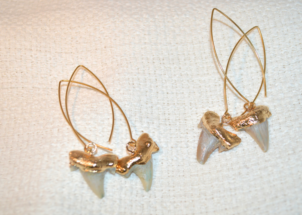 Stella Shark Tooth Dangles