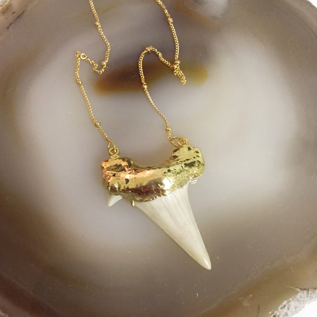 Rocky Shark Tooth Necklace