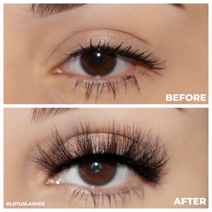 amaze 3d mink lashes false eyelashes afterglow lotus lashes before and after