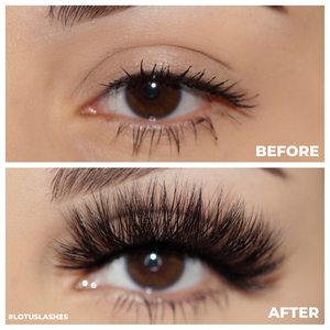 d-luxe mink lashes false eyelashes afterglow lotus lashes before and after