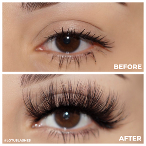 Shook 3d mink lashes false eyelashes afterglow lotus lashes before and after
