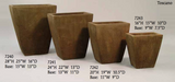 Contemporary Evelyn Planters