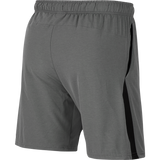 Men's Nike Flex Shorts
