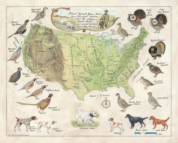Upland Game of the US Print