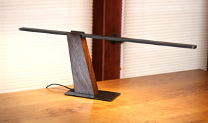 Two-Way High Dive Desk Lamp