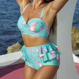 High waist bikini plus size swimwear