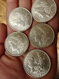 Morgan Silver Dollar - 1800's Morgan Dollar (random Date)