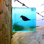 'Bird on a Wire' - Fused Glass Coaster (Transparent)