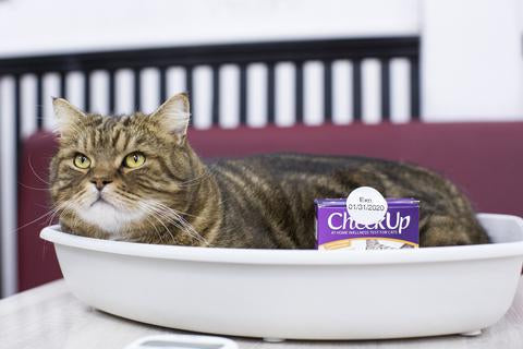 Kit4Cat CheckUp Test