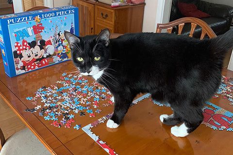 Tuxedo cat Dorian stands on a table covered in puzzle pieces.