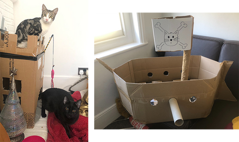 Home-made cardboard castle and cardboard pirate ship for cats!