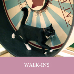 Walk-ins - Lady Dinahs Cat Cafe