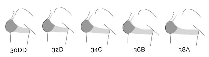 Sister Sizing Explained