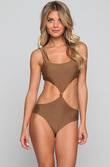 Colombia Mesh One Piece in Beach Babe/Shadow