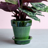 Green Simona Pot by Bergs Potter