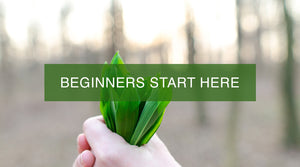 Beginners Start Here