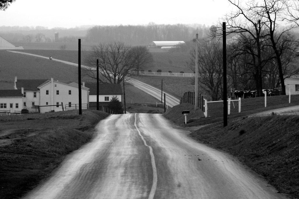 Black and white image of road in Lancaster, PA farmland