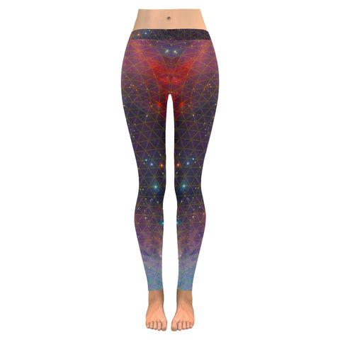 Netting of Existence Multi Dimensional Low Rise Leggings (Model L05)