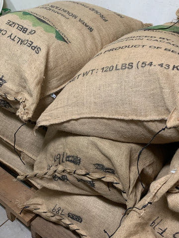 stack of cacao beans in hessian sacks