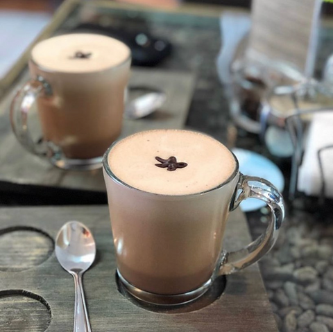 chocochino chocolate drinks made with cocoa powder