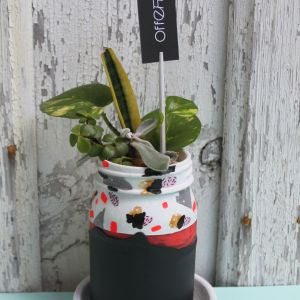 Offering: Hand Painted Glass Planter - Demi