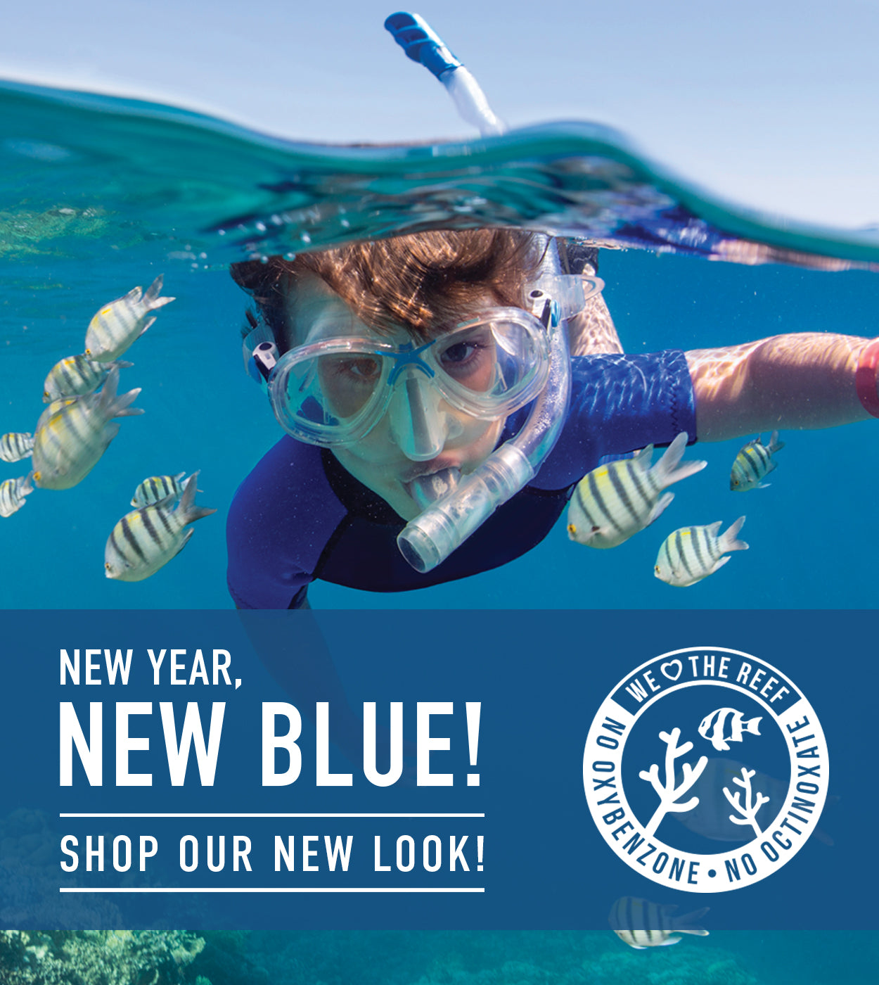 New Year, New Blue! Shop our new look!