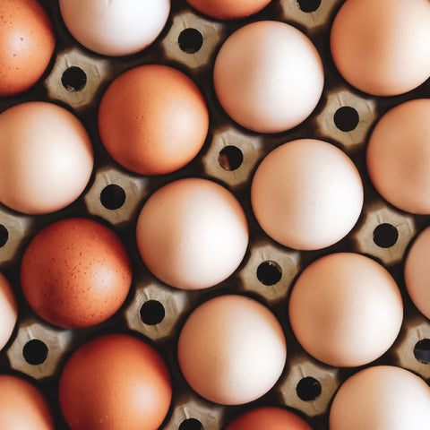 Foods That Support Immunity - Eggs