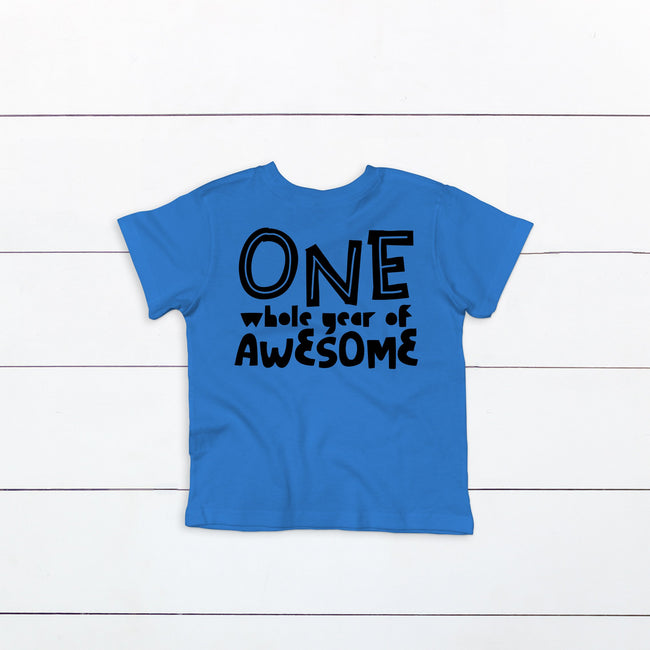ONE Whole Year of Awesome Shirt
