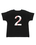 Baseball 2nd Birthday T-Shirt - Kids T Shirt - UMBUH