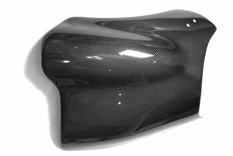 Buell Carbon Fiber X1 Windshield  - MDI CarbonFiber