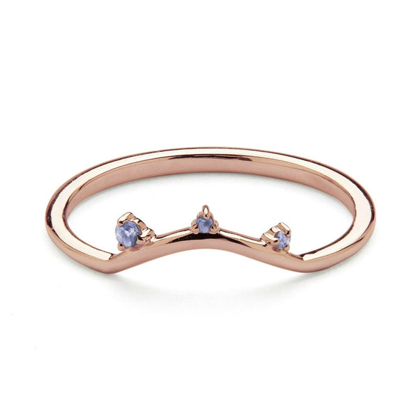 Little By Little Ring - Rose Gold