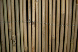 Bamboo Roll Fencing (All Sizes)