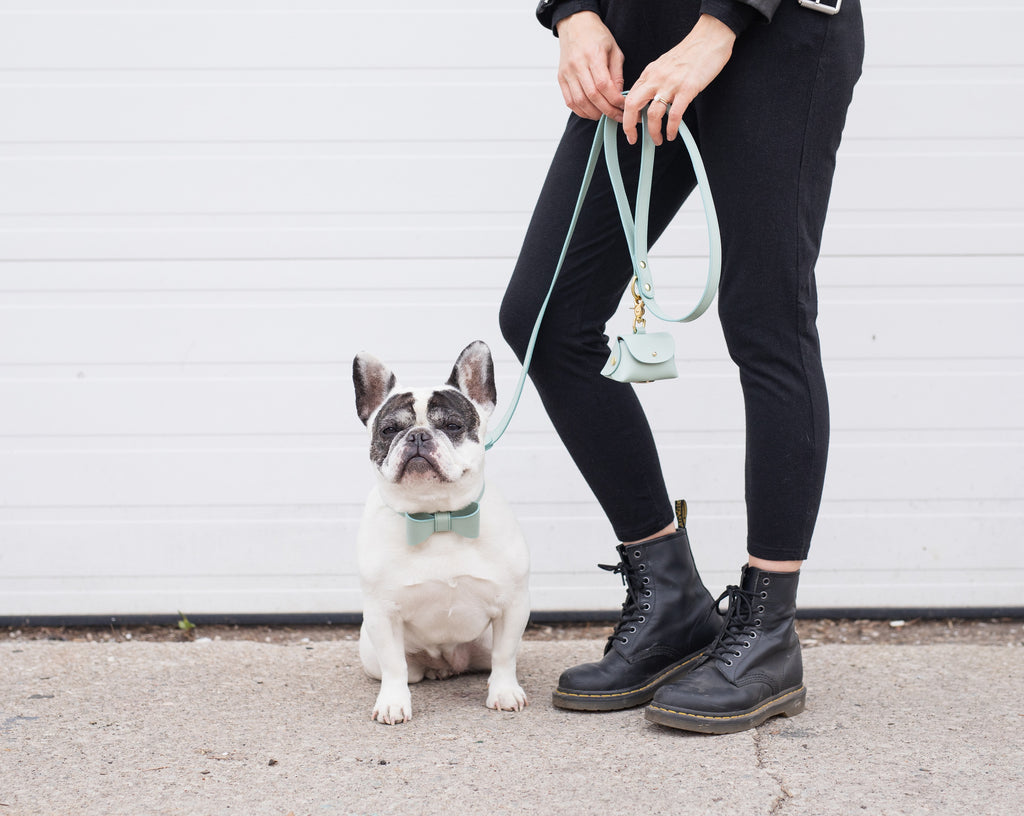 Mint leather poop bag pouch