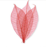 Leaf Embellishments by Impex
