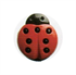 Novelty Button - Ladybird