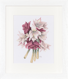 Marjolein Bastin Cross Stitch Collection - Amaryllis