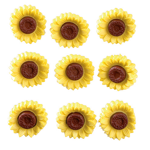 Novelty Buttons - Sunny Flowers