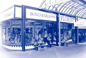 Bunches and Bow Shop Bunches Floral Designers, 9 Albion Place, Dunedin 9016