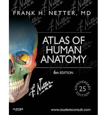 Atlas Of Human Anatomy 6th Edition By Netter Australia Buy Online