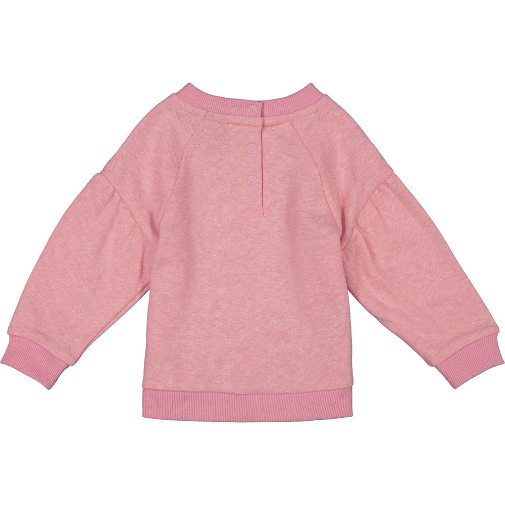 Baby Girl Sweatshirt Set - Andy & Evan